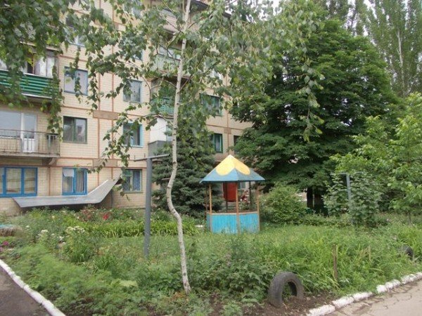 Территорию возле дома №138 по улице Петровского начали благоустраивать еще с 70-х годов прошлого века, фото-4