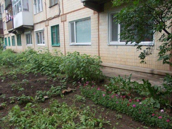 Территорию возле дома №138 по улице Петровского начали благоустраивать еще с 70-х годов прошлого века, фото-9