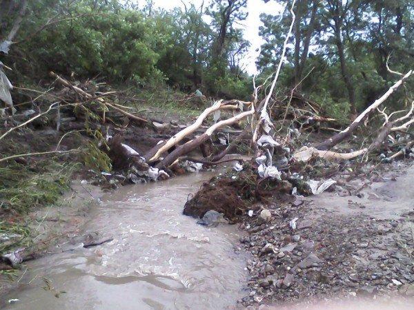 Наслідки стихії на Тернопільщині (фото від місцевих жителів), фото-2