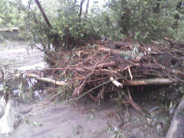 Наслідки стихії на Тернопільщині (фото від місцевих жителів), фото-4