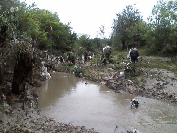 Наслідки стихії на Тернопільщині (фото від місцевих жителів), фото-7