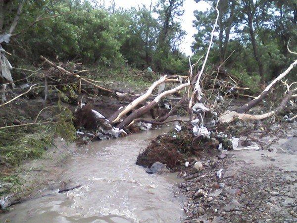 Наслідки стихії на Тернопільщині (фото від місцевих жителів), фото-9
