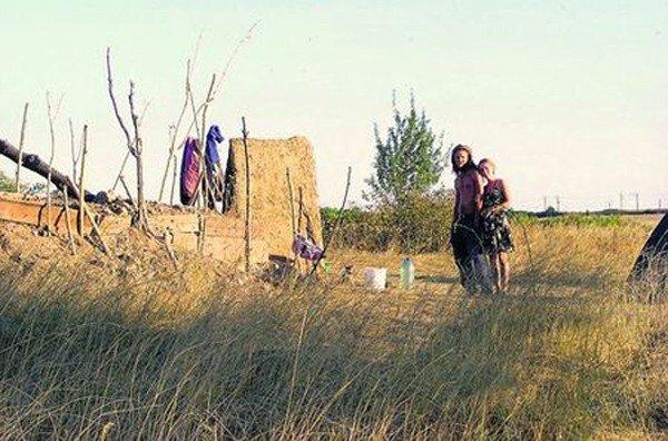 Неподалеку от Горловки среди поля живет причудливая семья, фото-3