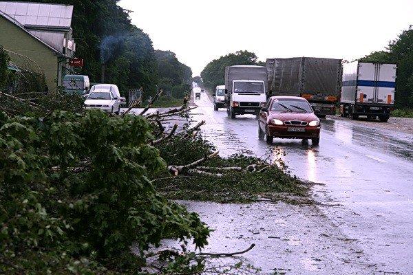 На Тернопільщині рятувальники звільняли трасу від повалених дерев (ВІДЕО, ФОТО), фото-1