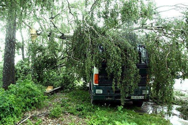 На Тернопільщині рятувальники звільняли трасу від повалених дерев (ВІДЕО, ФОТО), фото-2