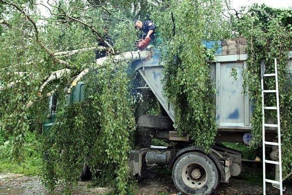 На Тернопільщині рятувальники звільняли трасу від повалених дерев (ВІДЕО, ФОТО), фото-4