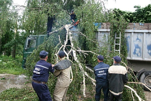На Тернопільщині рятувальники звільняли трасу від повалених дерев (ВІДЕО, ФОТО), фото-5