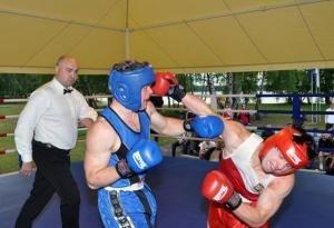 Бердичівські боксери  гідно представили Житомирщину, фото-1
