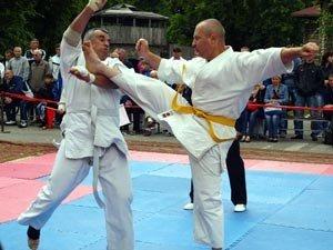 Відкритий чемпіонат Житомирської області з кіокушин-карате пройшов у міському Парку культури та відпочинку, фото-1