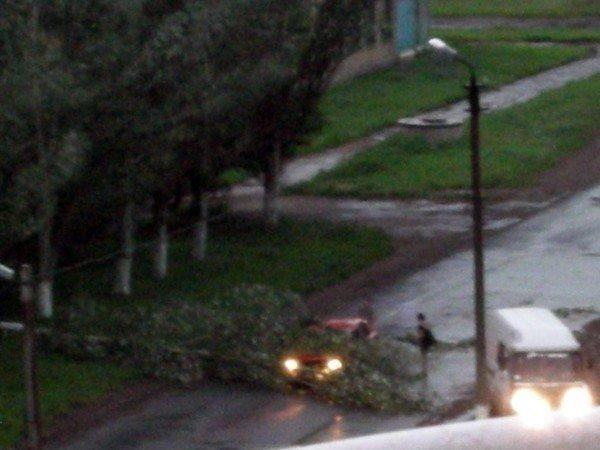 В Горловке из-за стихии пострадал лишь один человек, фото-1