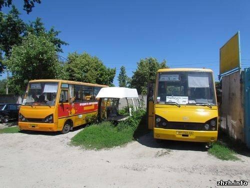 В Житомире скандалят водители маршруток №3 и их руководство  (ФОТО), фото-4