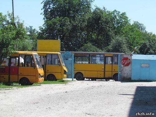 В Житомире скандалят водители маршруток №3 и их руководство  (ФОТО), фото-5
