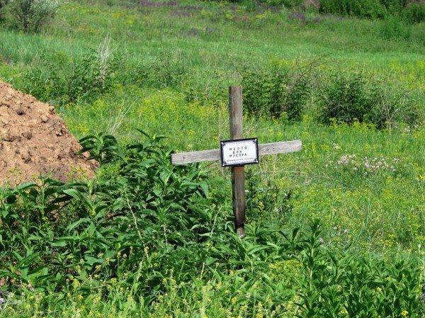На одном из артемовских кладбищ появились кресты с надписью «Место для мусора. Помним, любим, скорбим», фото-1