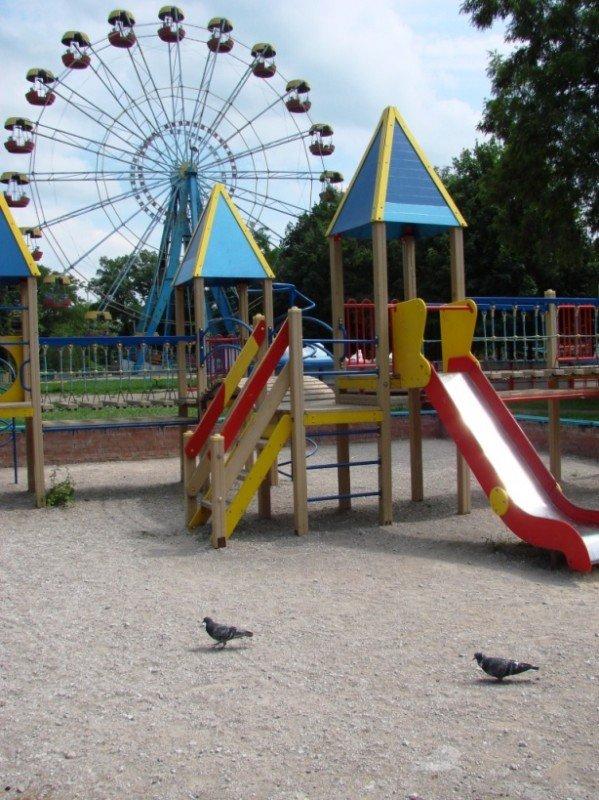 Песок на детскую площадку в центральном парке обещают завести в ближайшие сроки, фото-2