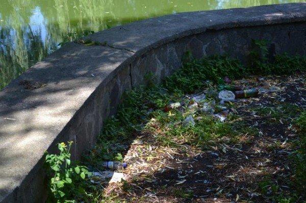 У Рівному в Усті знову масово гине риба (ФОТО), фото-3