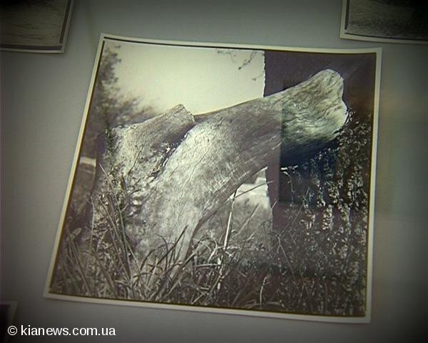 В Севастополе представили «Знаки города» (ФОТО), фото-6