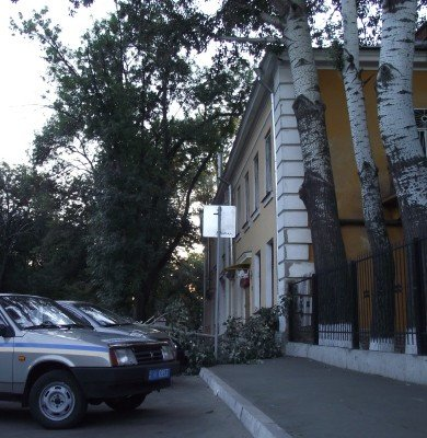 В Полтаве упавшая ветка изувечила два автомобиля (ФОТО), фото-4