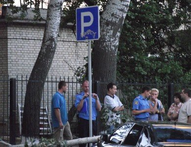 В Полтаве упавшая ветка изувечила два автомобиля (ФОТО), фото-6