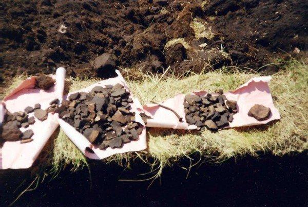 Липецкие школьники будут искать следы эпохи неолита, фото-2