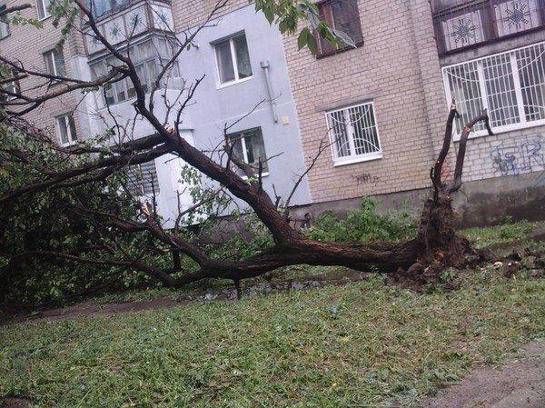 Давно невиданная стихия в Херсоне!!!, фото-10
