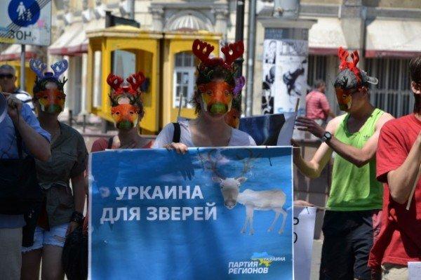 В Одессе прошла акция «Олени за Партию Регионов» (Фото), фото-2
