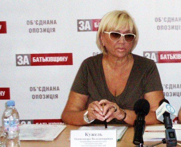 Александра Кужель в Николаеве: «На предпринимателей оказывает существенное налоговое давление», фото-1