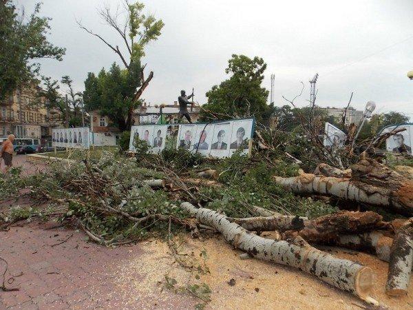 В Одессе дерево рухнуло на памятник «Спартаку» и портреты олимпийцев  (Фото), фото-2