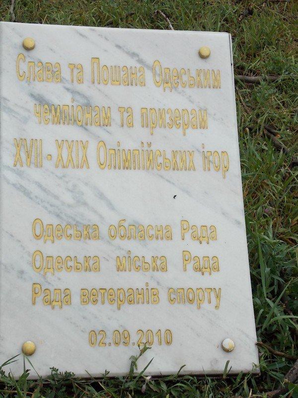В Одессе дерево рухнуло на памятник «Спартаку» и портреты олимпийцев  (Фото), фото-4