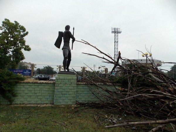 В Одессе дерево рухнуло на памятник «Спартаку» и портреты олимпийцев  (Фото), фото-5