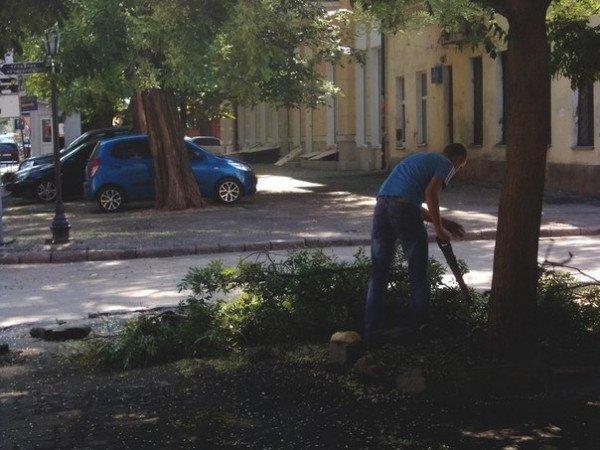 В Одессе все еще убирают последствия вчерашней стихии (Фото), фото-1