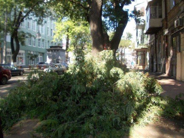В Одессе все еще убирают последствия вчерашней стихии (Фото), фото-2