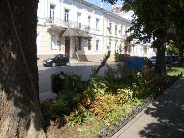 В Одессе все еще убирают последствия вчерашней стихии (Фото), фото-3