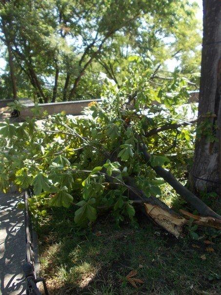 В Одессе все еще убирают последствия вчерашней стихии (Фото), фото-4