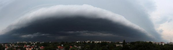 Вчерашний ураган в Одессе повалил два десятка деревьев  (Фото), фото-4