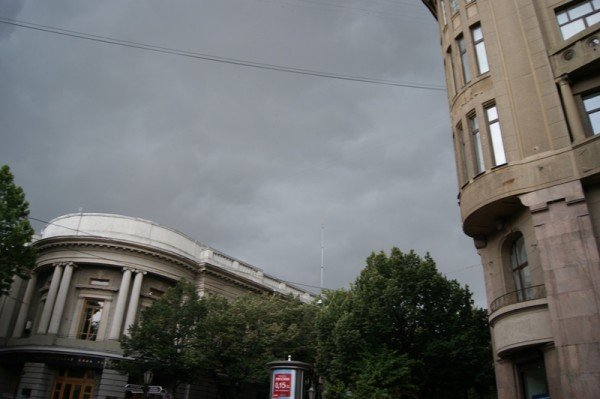 Вчерашний ураган в Одессе повалил два десятка деревьев  (Фото), фото-5