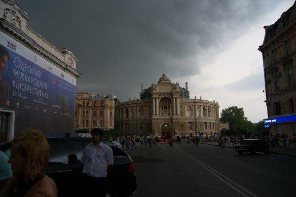 Вчерашний ураган в Одессе повалил два десятка деревьев  (Фото), фото-6