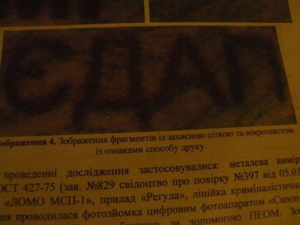 19-летний николаевец ездил на автомобиле с поддельными документами (ФОТО), фото-3