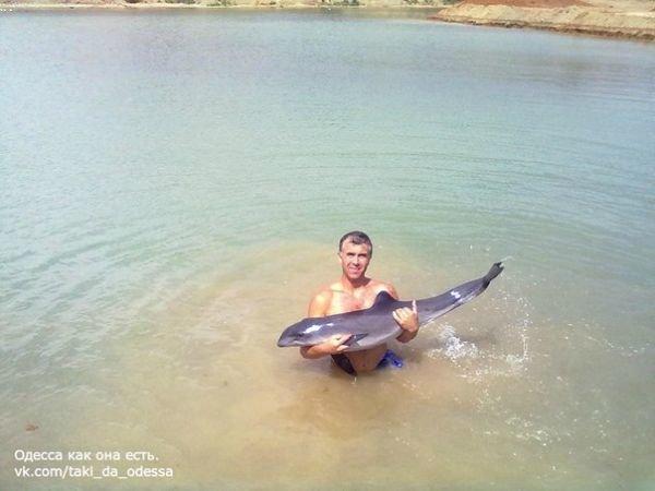 Под Одессой люди спасли дельфиненка (Фото), фото-2