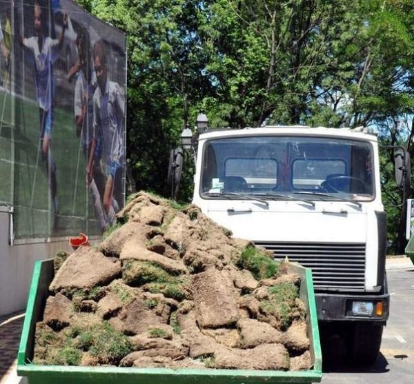 На стадионе «Черноморец» полностью меняют газон, фото-2