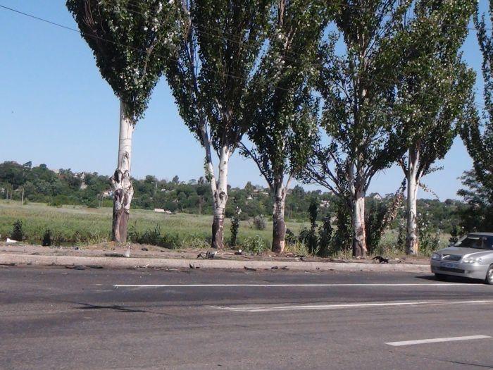 В Мариуполе «ВМW» врезалось в дерево, устроив масляный каток на Набережной (ФОТО), фото-6