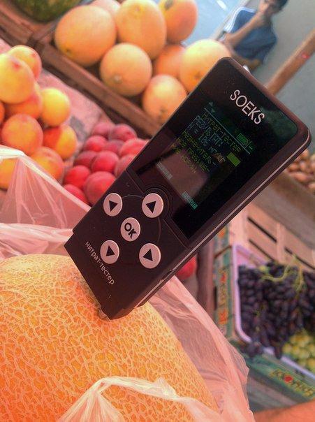 ФОТОРЕПОРТАЖ: Арбузное Запорожье. Где найти полосатые ягоды без нитратов?, фото-9