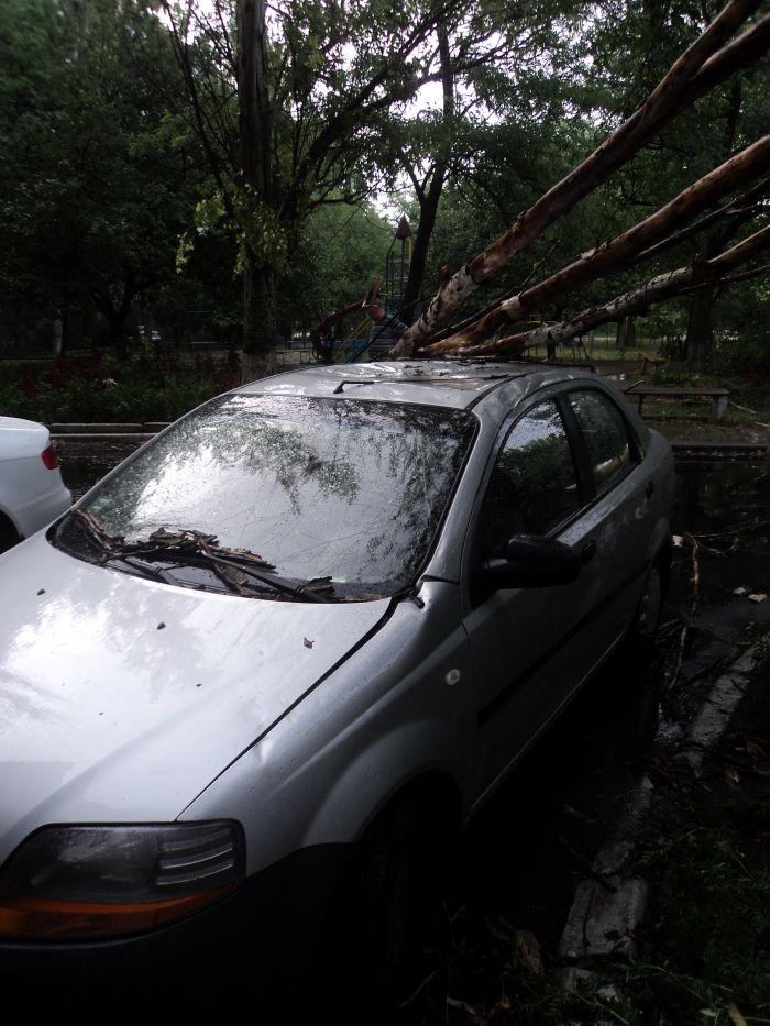 В Мариуполе ураган валил деревья и рвал провода (ФОТО), фото-2