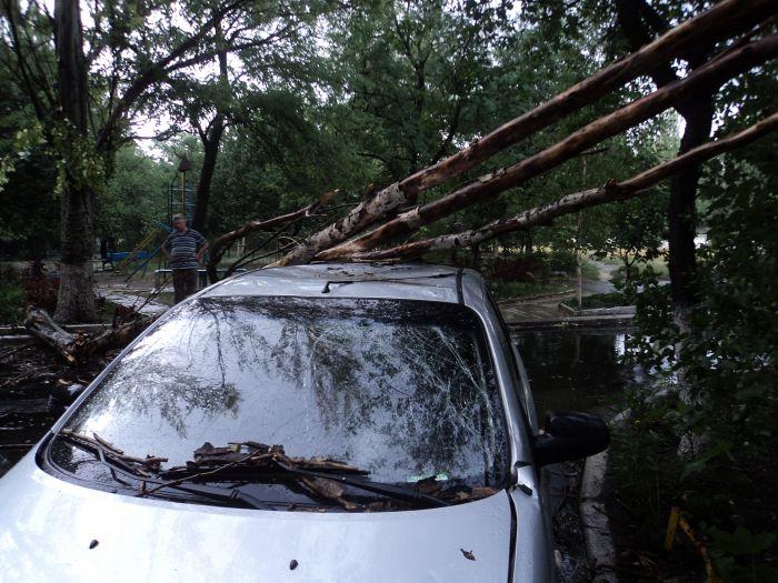 В Мариуполе ураган валил деревья и рвал провода (ФОТО), фото-3