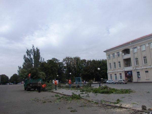 В центре Артемовска пилят каштаны. Продолжается реконструкция площади Свободы (ФОТО), фото-3