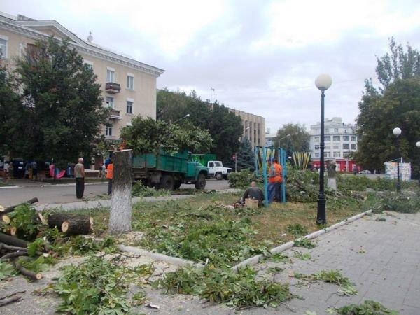 В центре Артемовска пилят каштаны. Продолжается реконструкция площади Свободы (ФОТО), фото-4