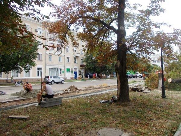 В центре Артемовска пилят каштаны. Продолжается реконструкция площади Свободы (ФОТО), фото-8