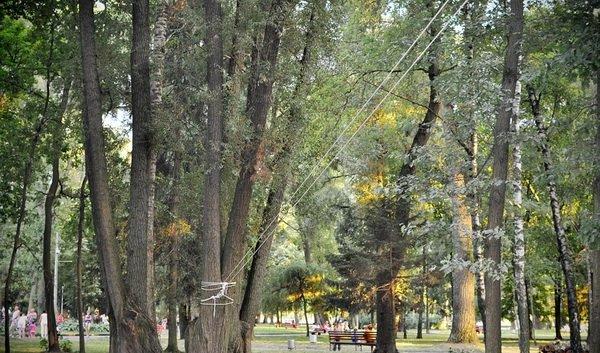 motuz_park_08