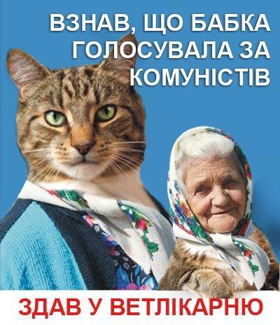 Днепродзержинские «бабушка с котом» подвергаются преследованиям и находятся в розыске (ФОТО), фото-3