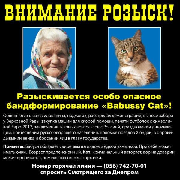 Днепродзержинские «бабушка с котом» подвергаются преследованиям и находятся в розыске (ФОТО), фото-4