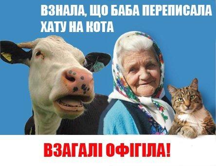 Днепродзержинские «бабушка с котом» подвергаются преследованиям и находятся в розыске (ФОТО), фото-2